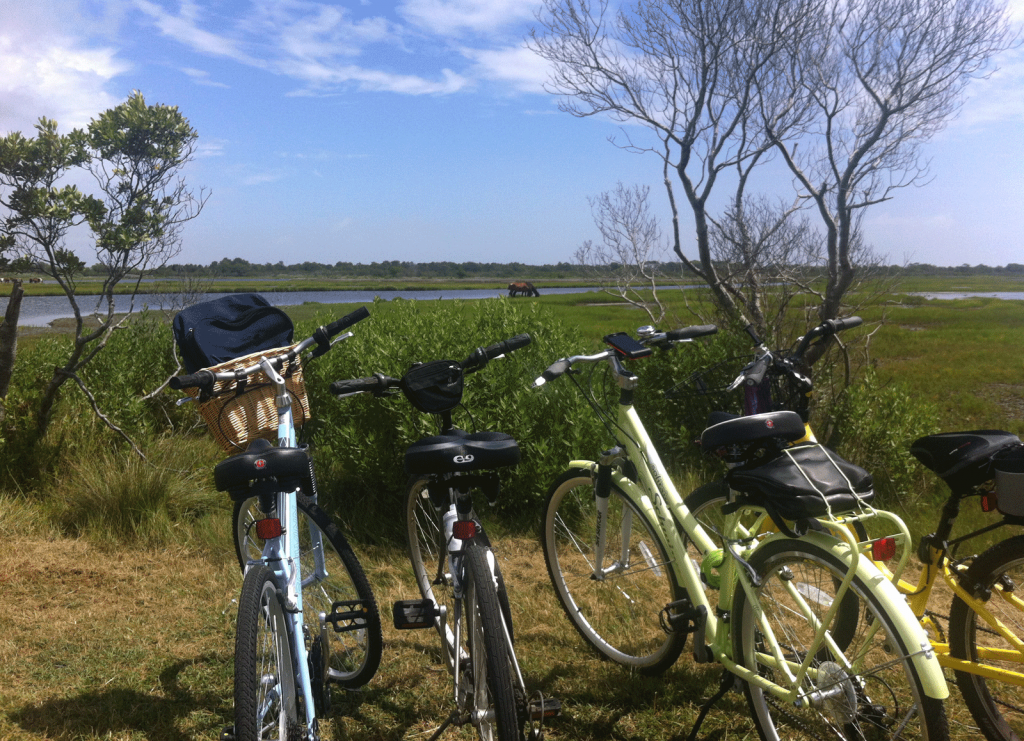 Biking on Assateague Island National Seashore